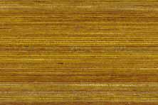 marcos wood